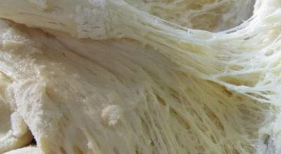 Дрожжевое тесто на растительном масле