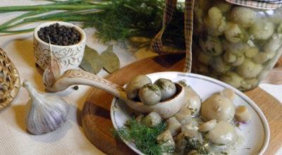 Шампиньоны маринованные с чесноком: лучшие рецепты