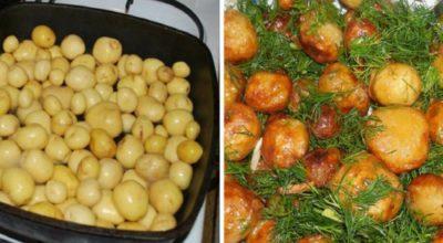 Что вкусного приготовить из молодого картофеля: 5 обалденных блюд для настоящих ценителей