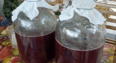 Готовим вкусное домашнее вино из… старого никому не нужного варенья