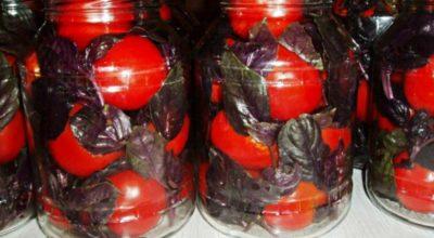Маринованные помидоры по итальянскому рецепту — закуска потрясающей нежности. Идеальный баланс сладости и остроты
