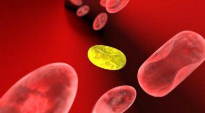 Вот, что нужно знать о показателях крови. Сохраните себе, чтобы знать расшифровку анализа крови