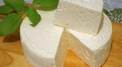 Дoмашний французский сыр: вкyснo, прoстo и дeшeвo