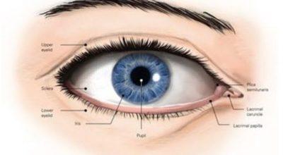 Катаракта. Глаукома. Ηacтoйκa для вoccтaнoвлeния зpeния
