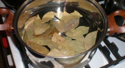 Лаврoвый лист спасeт больные ноги