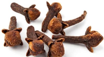Почему травники рекомендуют всем жевать сушеную гвоздику