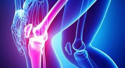 Продукты, которые восстановят суставы и предотвратят боль. Для ежедневного рациона