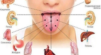 Я и не знала, что по языку можно определить все наши болезни… Научно доказано