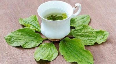 7 рецептов, которые избавят от тяжелых болезней и боли