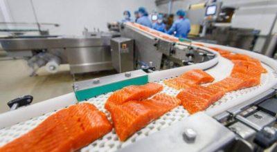 Раскрываем страшную правду: Норвежский лосось — самая токсичная еда в мире