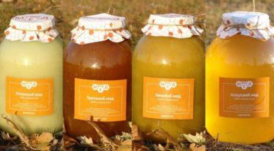 Какой мед от чего помогает — 12 видов меда. Какой лучше употреблять при той или иной болезни